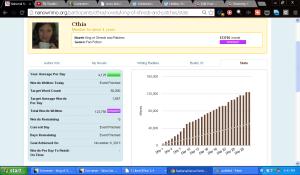 Final NaNo 2013 Stats.