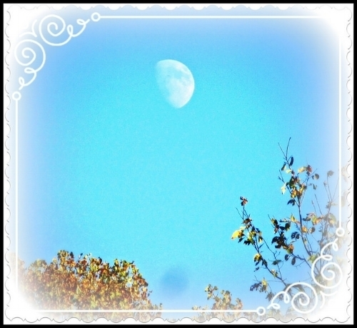 Moon over Saratoga Apple, Schuylerville, NY, October, 2014.